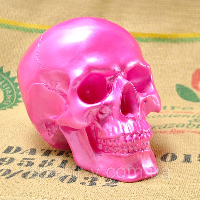 Розовый череп из гипса в натуральную величину. Декоративная модель черепа человека