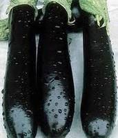 Семена баклажана Айдин Сияши 0,01 кг. MaySeed.