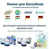 Альгекс, таблетки , поплавок - Химия для бассейна «Аква База 4в1» IntexPool 80500, для бассейнов до 366 (MINI, фото 3