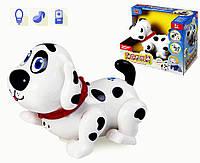 """Музыкальная интерактивная собака """"Лакки"""" 7110, лает, ворчит, реагирует на прикосновенья"""