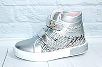 Демисезонные ботинки на девочку тм Том.м, р. 29, фото 1