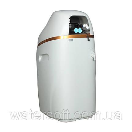 Фильтр умягчения воды RunLucky RL-R120L (без засыпки), фото 2