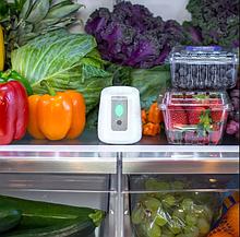 PureAir FRIDGE Очиститель-дезинфектор в холодильник
