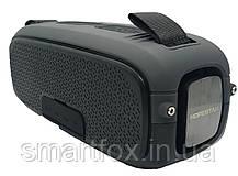Портативная колонка Bluetooth Hopestar A21, фото 3