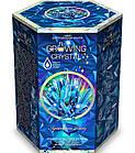 Набор для проведения опытов Растущий кристалл Danko Toys GRK-01, фото 4