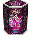 Набор для проведения опытов Растущий кристалл Danko Toys GRK-01, фото 7