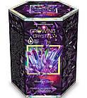 Набор для проведения опытов Растущий кристалл Danko Toys GRK-01, фото 8