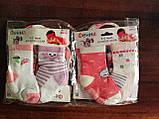 Шкарпетки дитячі. 0-6 місяців., фото 5