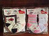 Шкарпетки дитячі. 0-6 місяців., фото 4