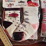 Шкарпетки дитячі. 0-6 місяців., фото 3