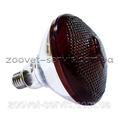 Лампа инфракрасная BR38 250 Вт красная 108-065-LO, фото 2
