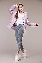 Модна коротка куртка демісезонна Великі розміри осіння 48,50,52,54,56,58,60, фото 3