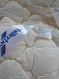 Детское теплое гипоаллергенное одеяло для новорожденных Нина 110× 140, фото 2