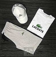 Комплект Lacoste (шорты+футболка+кепка), фото 1
