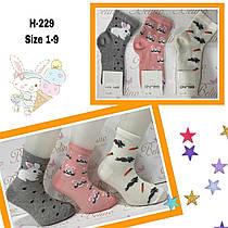 Детские демисезонные носочки для девочек ( мин. заказ 12 шт. в уп. ) 1-2 (86-92 см рост)