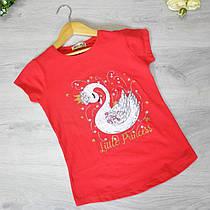 Дитяча футболка, трикотаж, для дівчаток 8-12 року (5 од. уп)