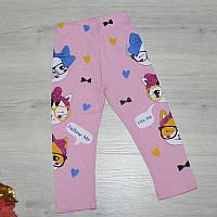 Дитячі футболки, трикотаж , розмір 1-8 років ( 86-92/98-104/110-116/122-128) см зріст (4 од уп)