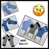 Дитячі демісезонні шкарпетки для хлопчиків ( мін. замовлення 12 шт. в уп. ) 5-6 (110-116 см зріст)