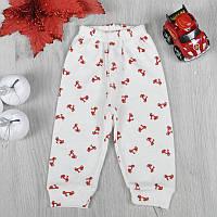 Дитячі штанці, інтерлок, для дівчинки 3-6-9 міс. (6 од в уп)