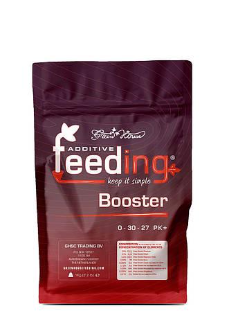 Стимулятор цвітіння PK Booster Powder Feeding 500 гр, фото 2