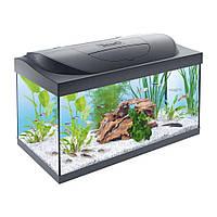 Аквариум Tetra Starter Line LED для золотых рыбок, черный, 54 л