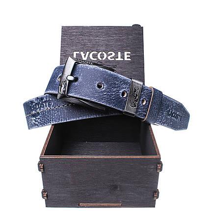 Мужской кожаный ремень Wiseo Lacoste синий Реплика (UF55617), фото 2