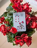 ПЕРЕДЗАМОВЛЕННЯ! Карти Оракул Ленорман в Червоному Оксамитовому Мішечку, з трактуванням російською мовою ( Україна ), фото 10