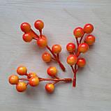 Ветка с желто оранжевыми ягодами 1.4 см длина 10 см, фото 2