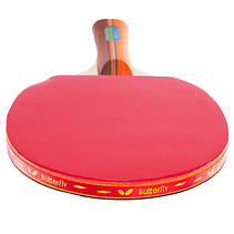 Набор ракеток для настольного тенниса (пинг понга) 2 ракетки + 3 мячи + чехол ⭐⭐⭐⭐⭐, фото 3