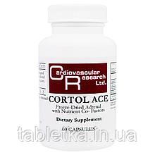 Cardiovascular Research, Cortol Ace, 60 капсул