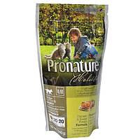 Pronature Holistic Kitten Chicken & Sweet Potato Cat, Корм для котят 0,34 кг