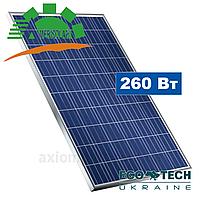 Amerisolar AS-6P30 260 W солнечная панель поликристаллическая, фото 1
