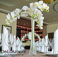 Ваза с орхидеями на столы гостей