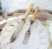 Английский столовый нож и вилка с целлулоидными ручками, серебрение, Англия