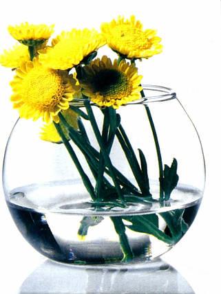 Ваза Pasabahce Flora аквариум 78 мм (43407), фото 2