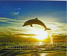 """Картина по номерам  """"Дельфин"""" 40*50 см, краски - акрил"""