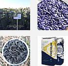 НС Сумо 007 (NS 6059) Евросем (под Гранстар, Экспресс, Сумо) Оптимум, фото 2