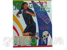 Зошит шкільна з малюнком на обкладинці 24листов клітка (20 шт)