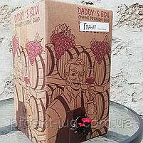 """Вино """"Смородина"""" ( Болградский р-н) красное полусладкое   10 л, фото 2"""