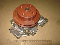 Насос водяной МТЗ 320 ДВС 3LD (БЗА). 3LD-1307010-Б