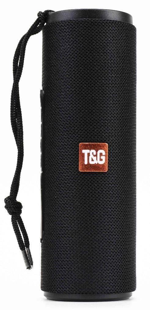Колонки акустические T&G TG-604 Black