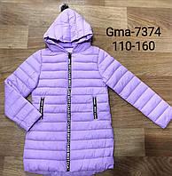 Курточка для девочек Glo-Story, 110-160 рр.Артикул: GMA7374 , фото 1