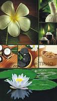 СПА-оборудование Цветок Лотоса