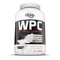 Протеин DNA Supps WPC, 2.27 кг Клубника