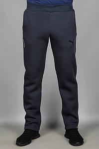 Зимние спортивные штаны Puma (1904ANTR)