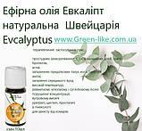 Ефірна олія Евкаліпт натуральна Швейцарія 10 мл, фото 5