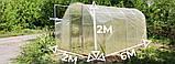 """Теплиця """"Даринка"""" 2х6м, труба 20х20мм з плівкою 120 мкм, фото 6"""