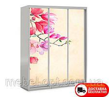Шкаф купе 3Д трехдверный Цветы 12, выбор цвета корпуса и рисунка