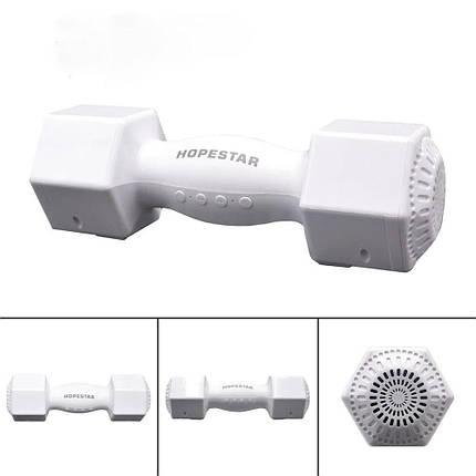 Портативная Bluetooth стерео колонка Hopestar H16 белый  (RZ614), фото 2