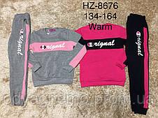 Трикотажный костюм - двойка утепленный для девочек Active Sports, 134-164 pp. Артикул: HZ8676